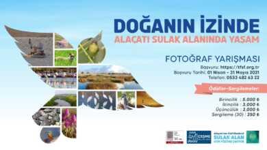 Doganin Izinde – Alacati Sulak Alaninda Yasam Fotograf Yarismasi header